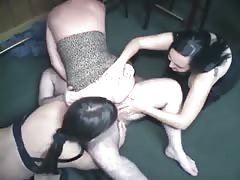 Three horny amateur bitches share a weiner on the floor